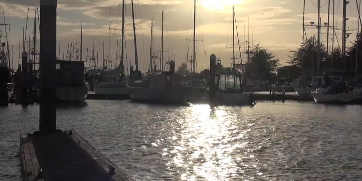 boats in marina at twilight